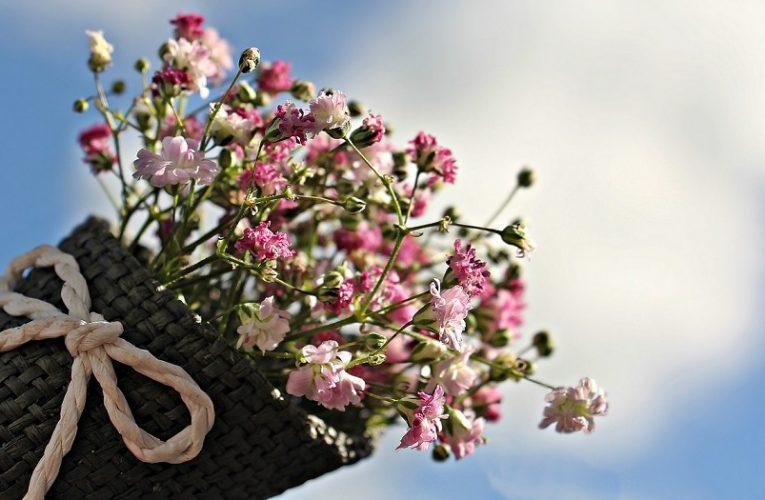 Цветя за тъщата – уаууу! – Може да се случи само веднъж – когато няма как да се избегне